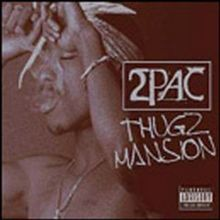 Thugz Mansion